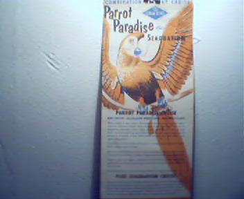 Parrot Paradise Seaquarium from Gray Line Tou
