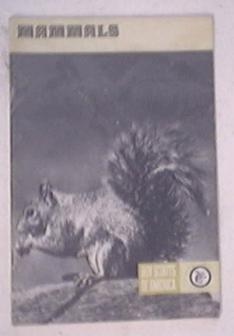 1973 Mammals Merit Badge Pamphlet